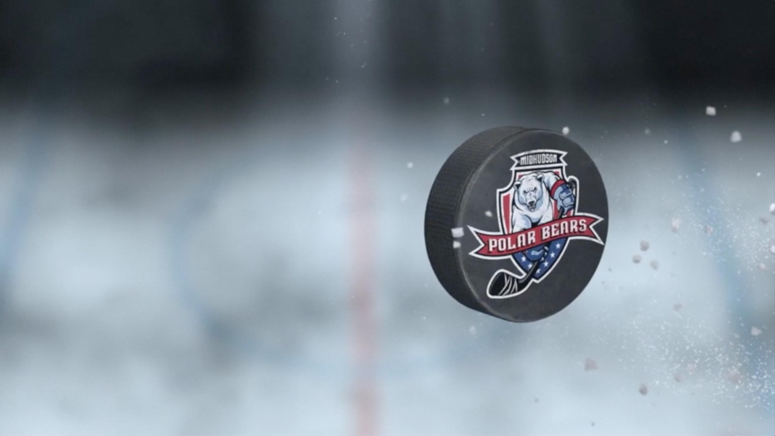 hockey puck with logo
